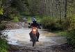 orienteerumine_66_20121024_1464988834